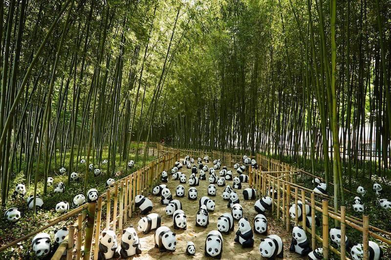 Pandas_4