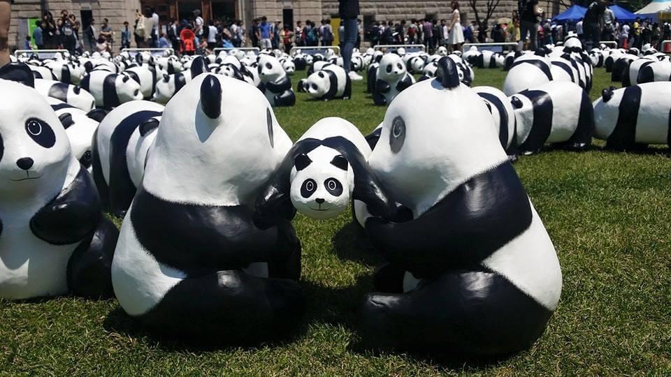 Pandas_Play