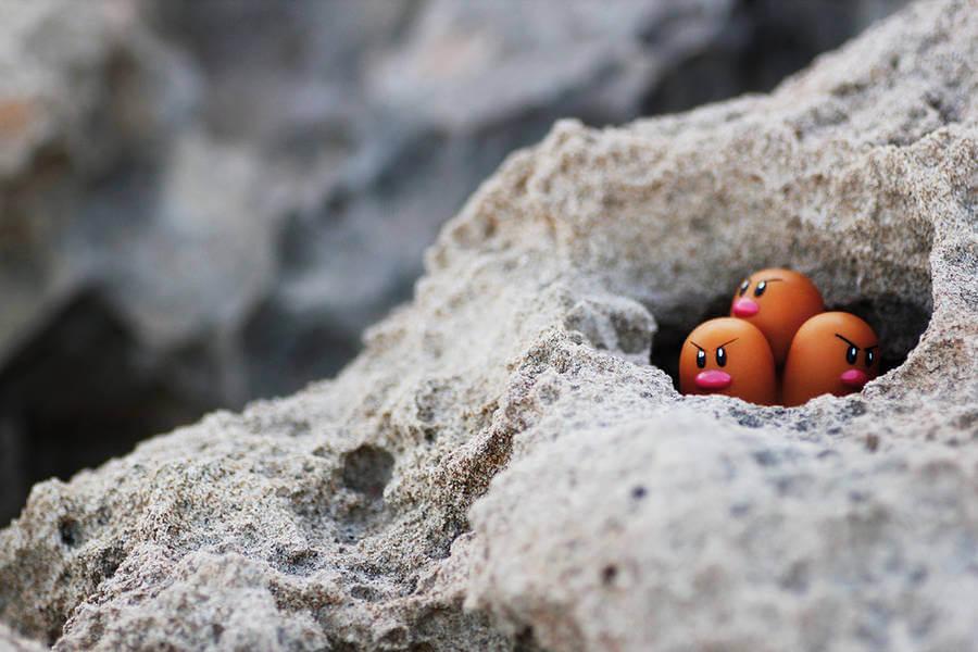 pokemon-photo-jules32-900x600