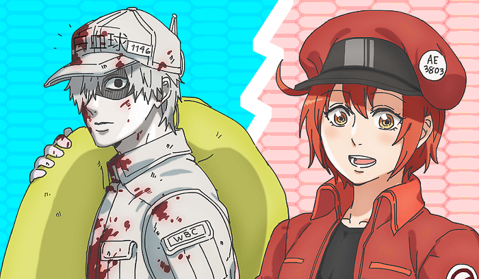 Hataraku Saibou Cells at Work!